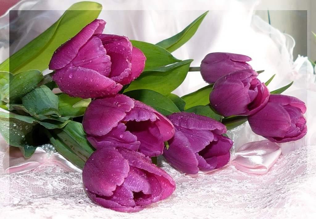 Красивые открытки с живыми цветами к 8 марта
