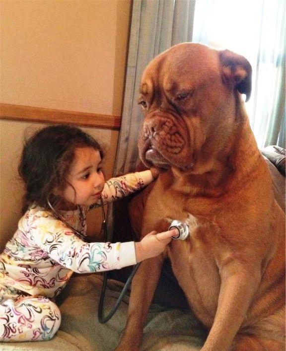 Кто, как ни они, научат малышей доброте?