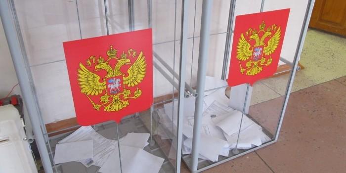 Эксперты ЭИСИ заявили о соответствии российских выборов стандартам ОБСЕ