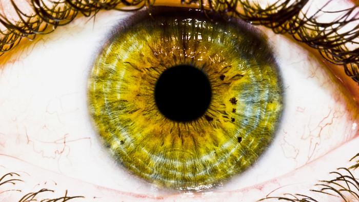 В мире нет двух людей с абсолютно одинаковым цветом глаз