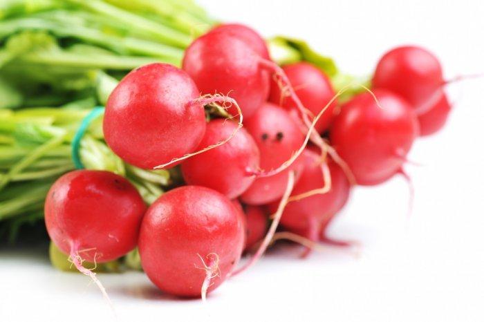 Огород на подоконнике: как вырастить редис
