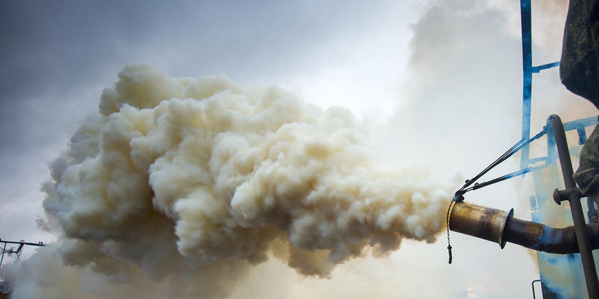 Минобороны Украины закупило вместо дымовых завес смесь для окуривания деревьев