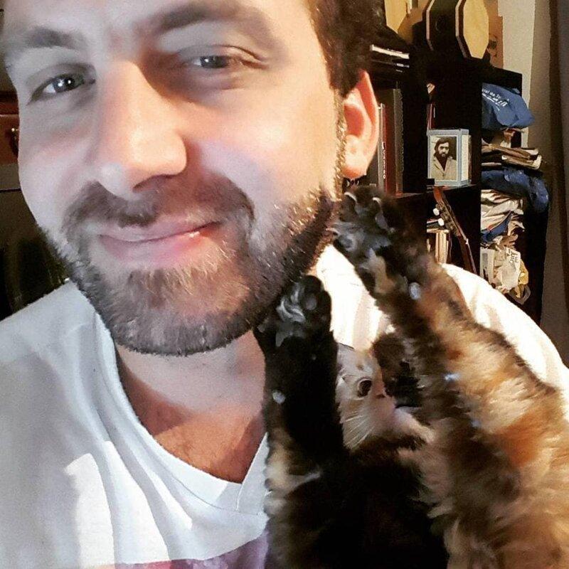 Её хозяин постоянно делится с подписчиками всё новыми фотографиями своей любимицы домашний питомец, животные, кошка, красота, окрас, смесь, химера
