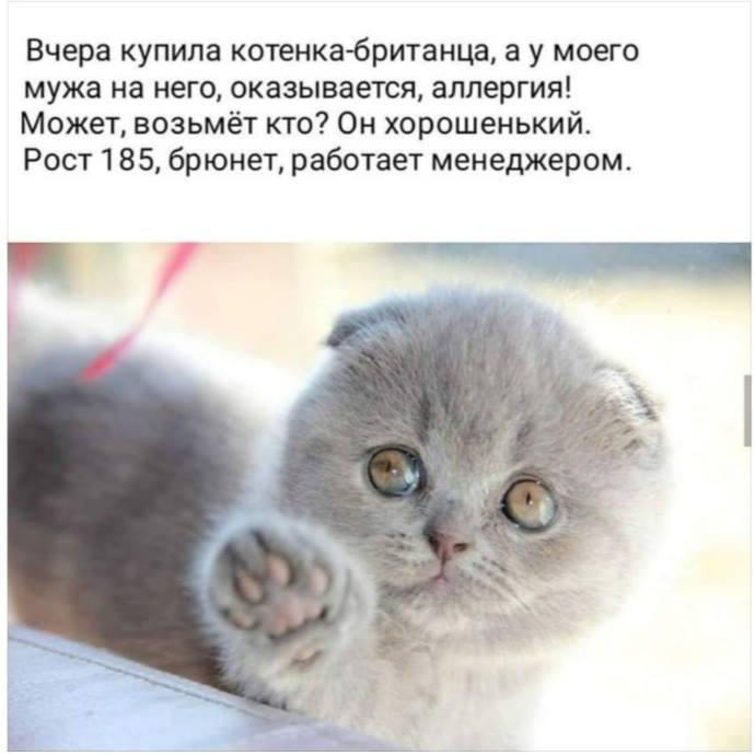 Главное преимущество дураков - численное ))