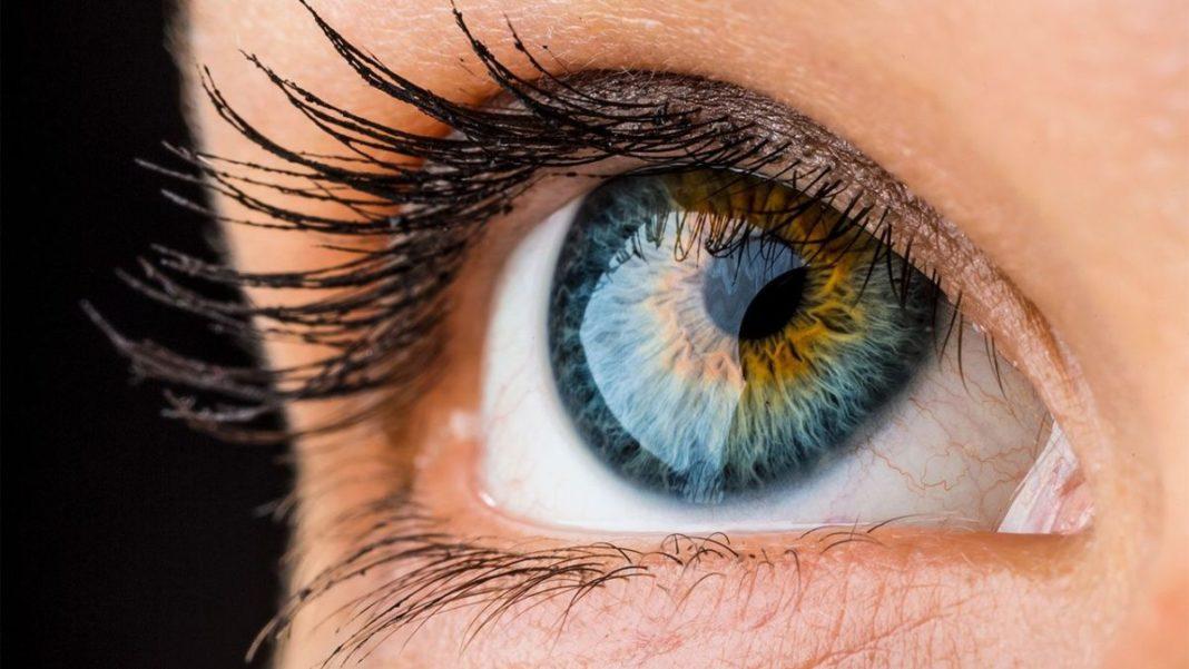 Картинки по запросу Прорыв в медицине: роговицу глаза будут печатать на 3D-принтере