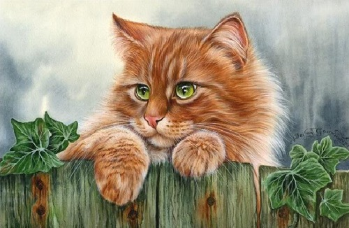 И снова кошки)