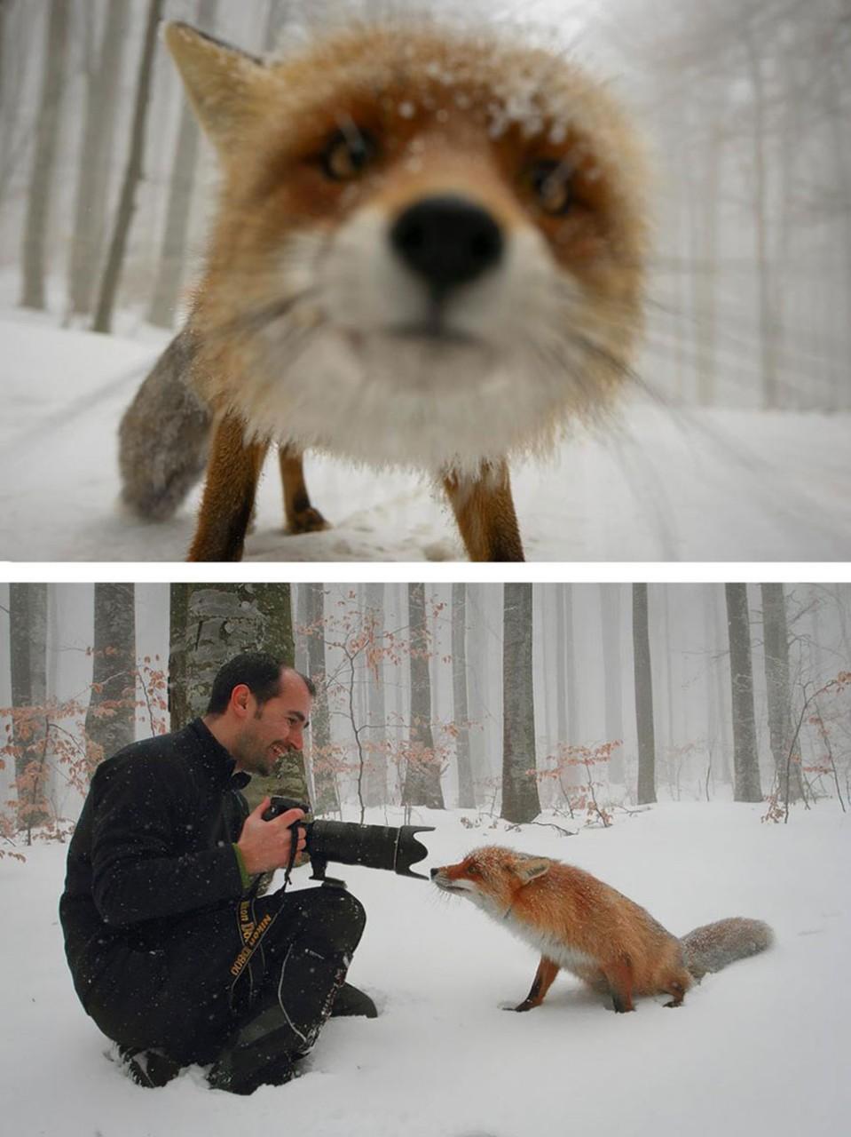 Как делаются красивейшие кадры