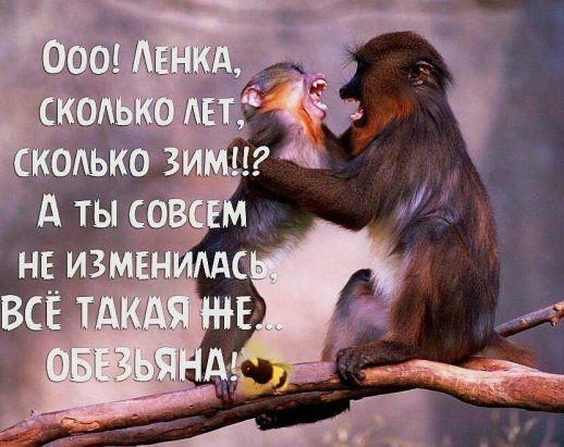 На въезде в Одессу патрульный останавливает авто: - Почему нарушаете?...