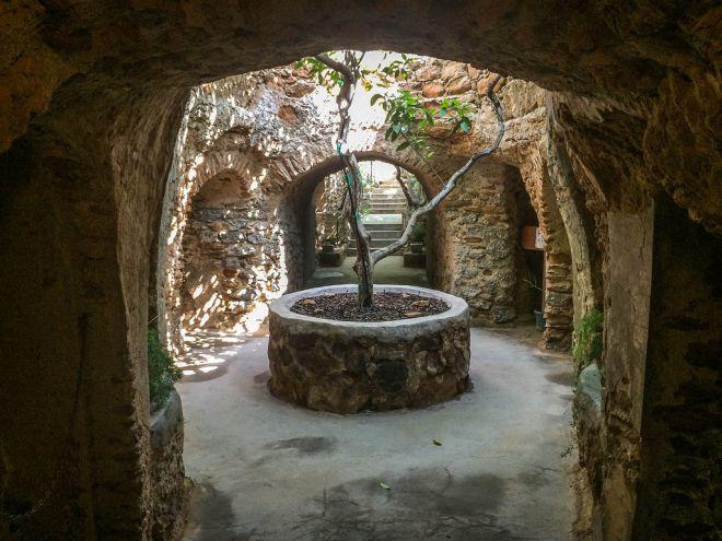 Подземный сад