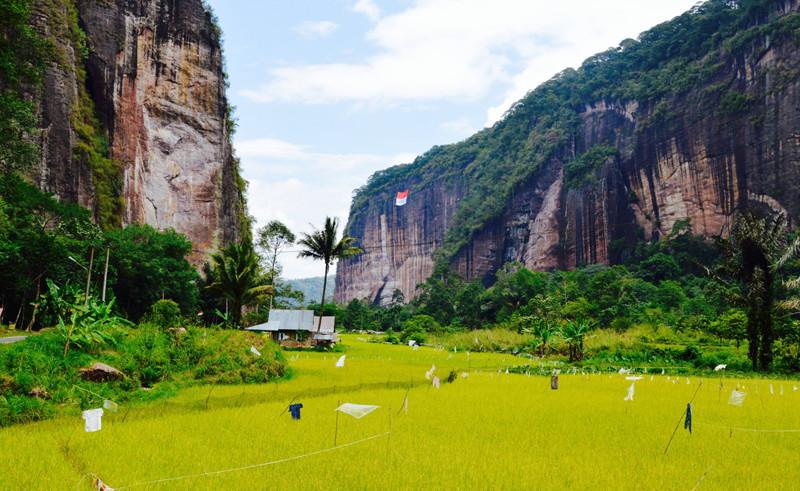 Харау, Индонезия долина, природа, факты
