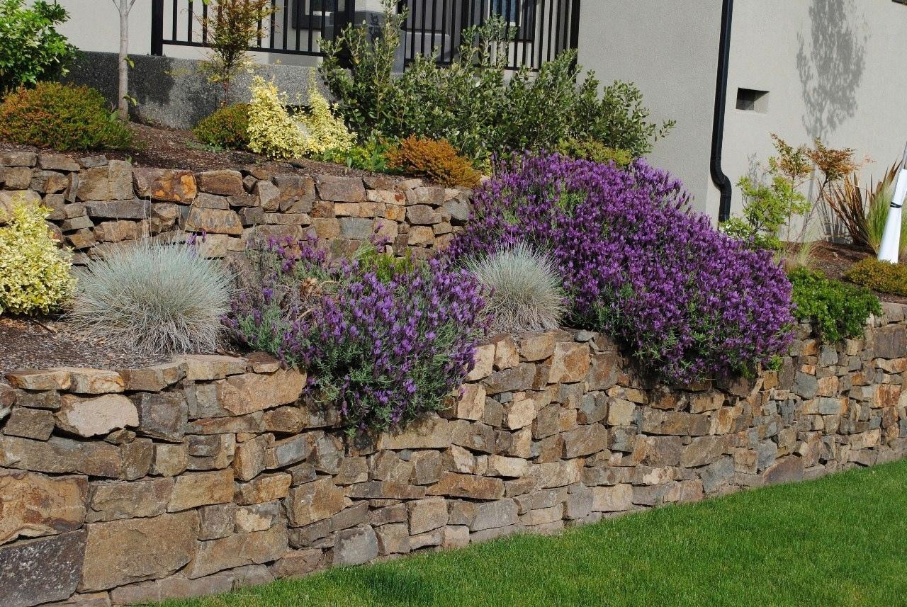 каменная подпорная стенка с ампельными растениями