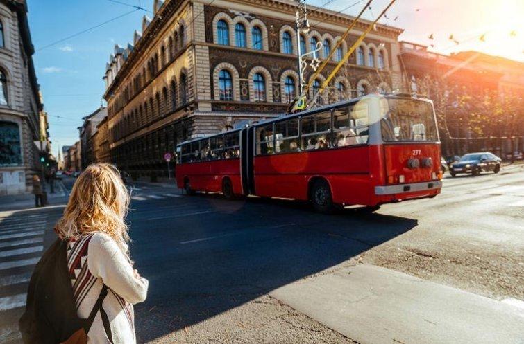 Переходить дорогу на зеленый мигающий сигнал светофора в мире, венгрия, запрет, люди, правило, факты