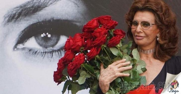 Софи Лорен — 84, но она по-прежнему прекрасна! Вот ее 7 советов для женщин загадочность