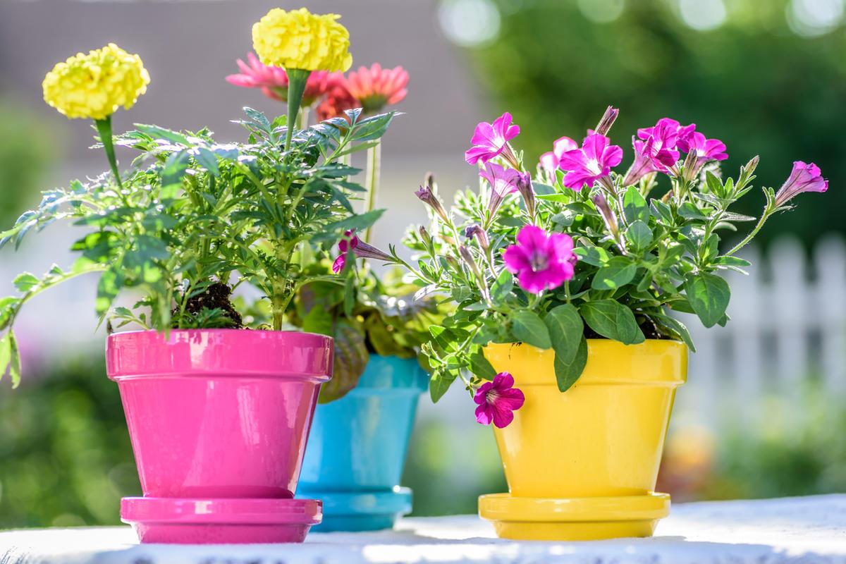 Декор цветочных горшков своими руками: более 50 идей