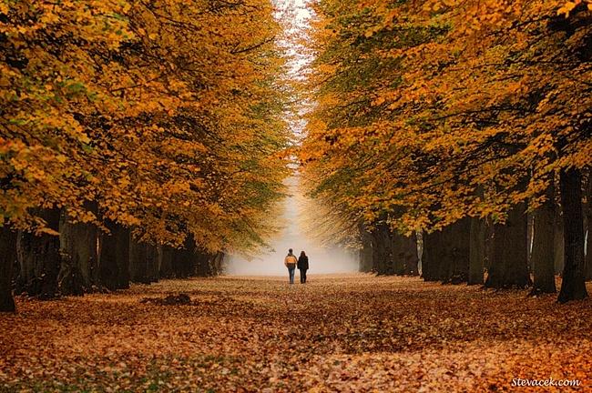 Гороскоп любви на октябрь 2014 года