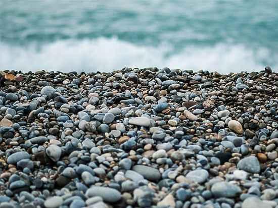 Фонд Ролдугина бесплатно получил пляж в Сочи