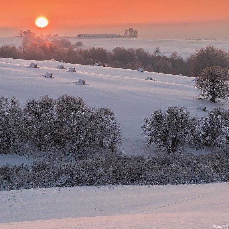 Закат в предгорьях, Алтайский край горы, леса, природа, природа России, российская природа, россия