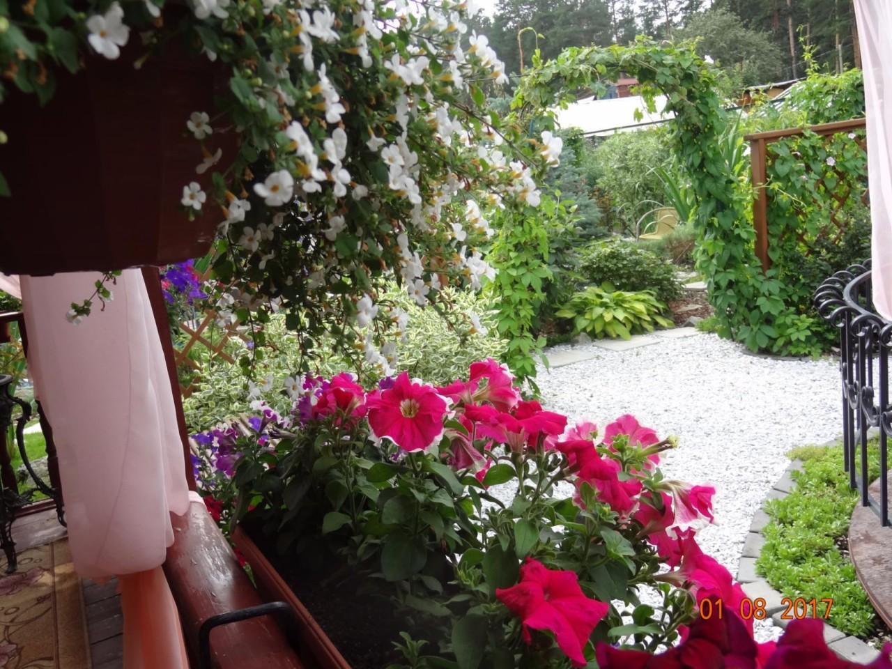 Красивый сад Татьяны..