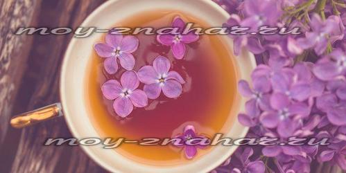 Изображение - Сирень на спирту для суставов отзывы original