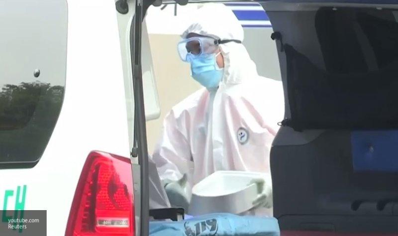 Новосибирские вирусологи начали разработку двух вакцин от китайского коронавируса