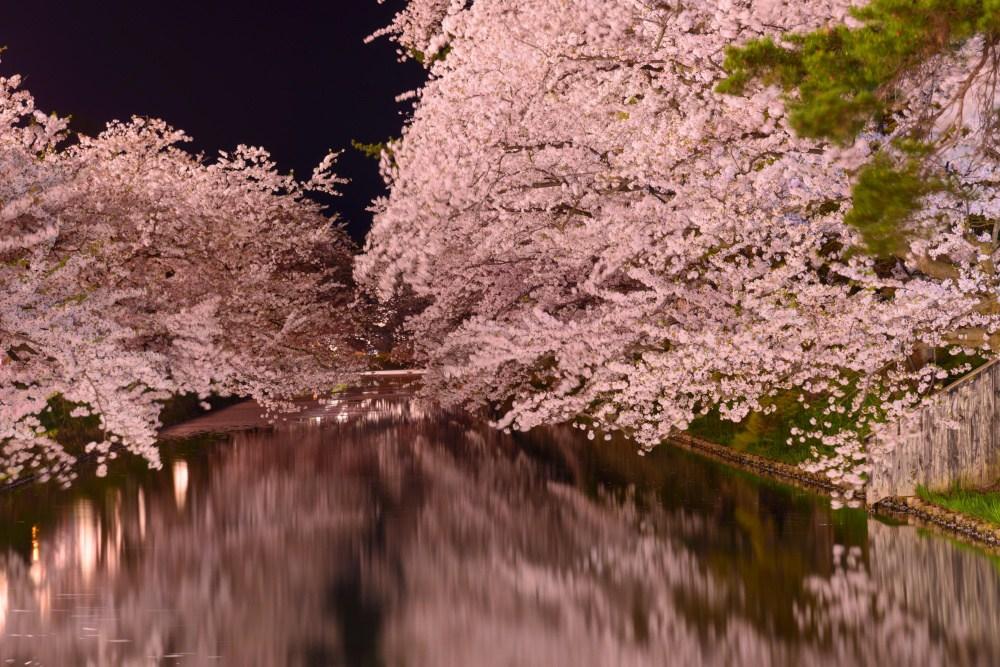 картинки весны в японии чушкимедь чушках