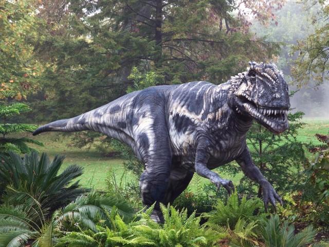 Удивительные открытия в палеонтологии, сделанные в 2014 году