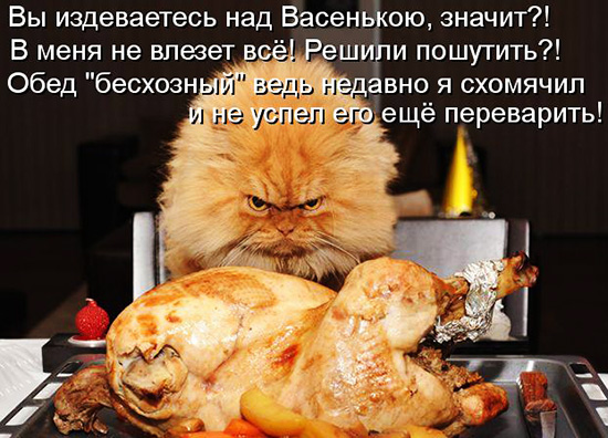 "Кулинарные котоматрицы ""ретро"""