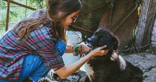 Девушка гладит собаку