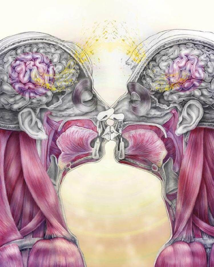 ГОРМОНЫ: ЭСТРОГЕН — вес, капризы, кости, сердце, память.