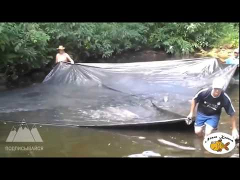 Странная необычная рыбалка