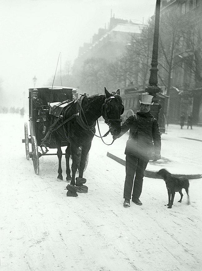 Лошадь на Парижском бульваре (1908 г.) Весь Мир в объективе, ретро, старые фото