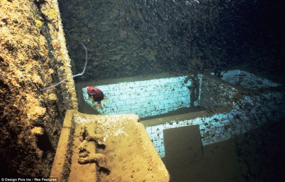 Когда-то это была ванная комната на затонувшем японском судне