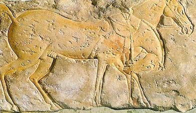 «Золотые кони хана Батыя»: где спрятаны сокровища Золотой Орды