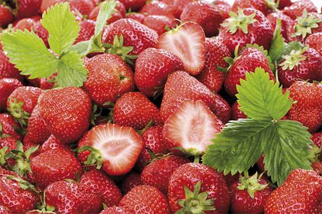 Картинки по запросу Сезон клубники открыт: как выбрать самые полезные ягоды