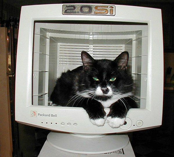 Новая жизнь старого монитора. Подборка идей