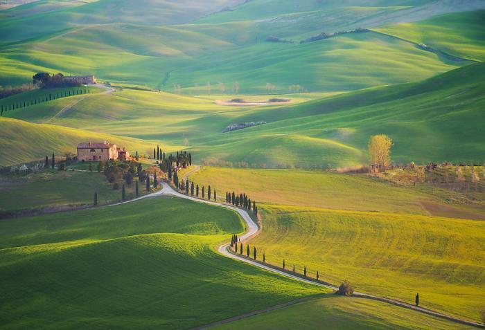 Тосканская идиллия (13 фото)