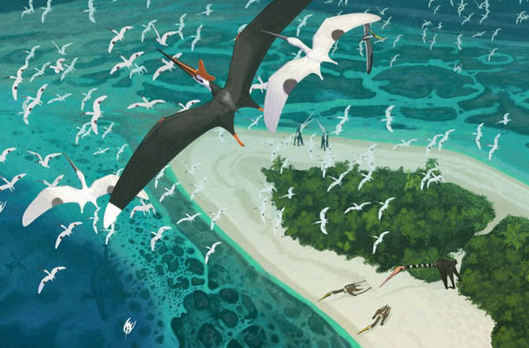 Динозавры, похожие на драконов, правили в небе