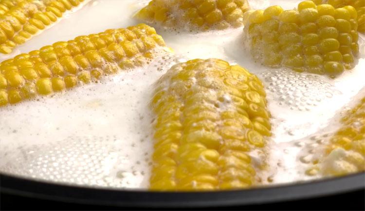 Век живи, век учись! Вот, в чём надо варить кукурузу! Бабушка научила.. можно, кукурузу, молоко, початки, солью, более, сочными, молока, Обычно, нежнымиЧтобы, очень, становятся, варятся, Поскольку, убежитПока, водой, разбавлено, лежала, небольшом, варим