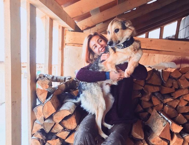 Девушка живет влесу ссотней покалеченных собак. Араньше она была известным навсю Москву фотографом