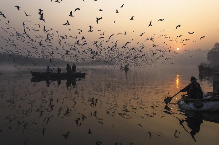 Туман, лодки и стаи морских чаек – постоянные составляющие зимнего утреннего пейзажа.