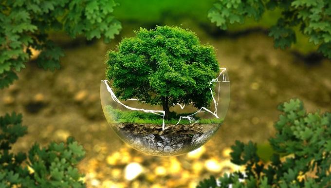 Составлен экологический рейтинг российских регионов