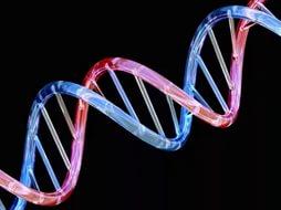 Богатство и успех заложены в ДНК