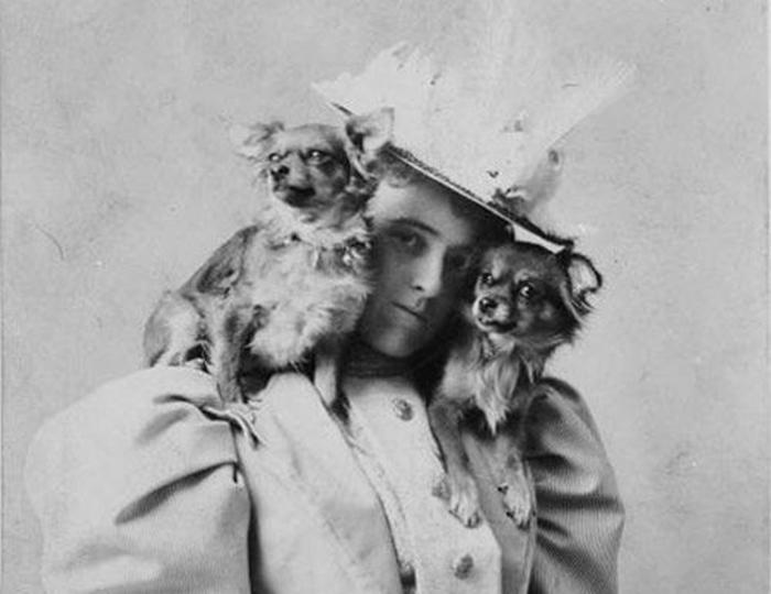 Любимые собаки знаменитых писателей
