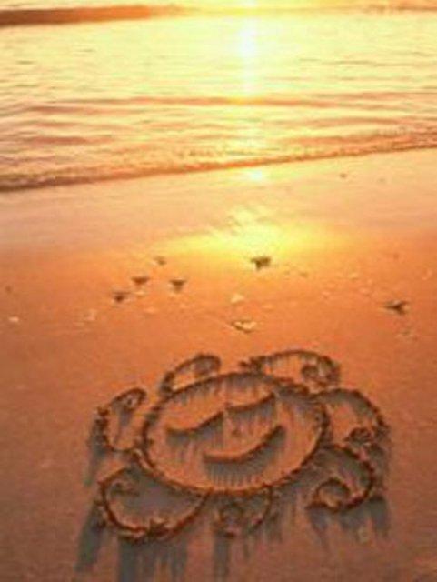 пожелание одного дня, для любимого от меня :)