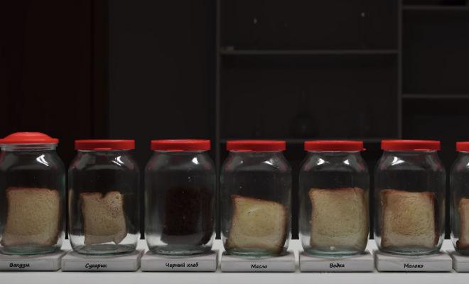 Где быстрее появляется плесень: экспериментатор пропитал хлеб напитками, положил в банку и стал ждать где появляется плесень,пакет,плесень,Пространство,хлеб,эксперимент