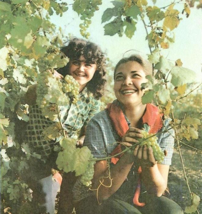 """Фото советских женщин — какие же они красавицы и как не похожи на современных """"барби"""""""