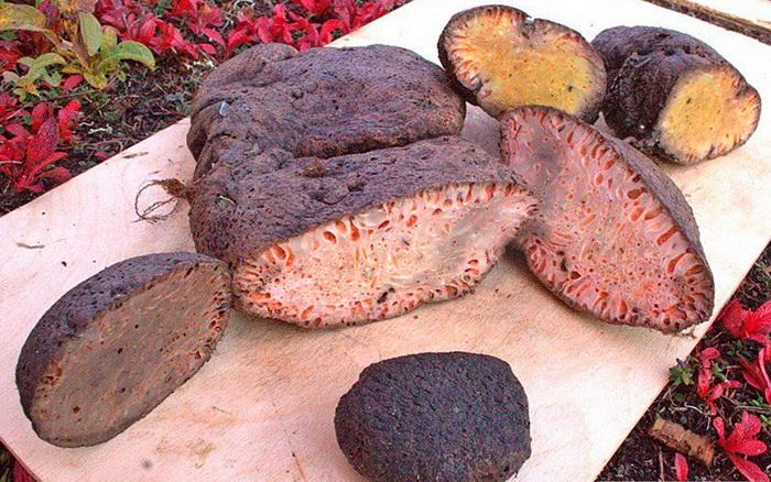 Некоторые национальные блюда жителей Севера еда