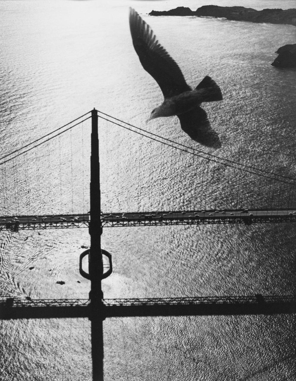 San-Frantsisko-ulichnye-fotografii-1940-50-godov-Freda-Liona 40-2
