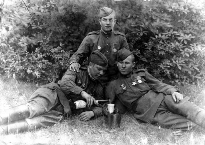 «Наркомовские» 100 граммов: кто из советских бойцов обходился без них на фронте