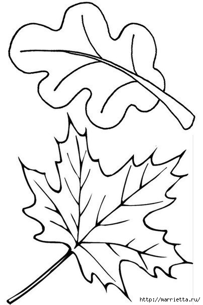 Ежик в осенних листьях. Шаблоны (4) (403x604, 88Kb)